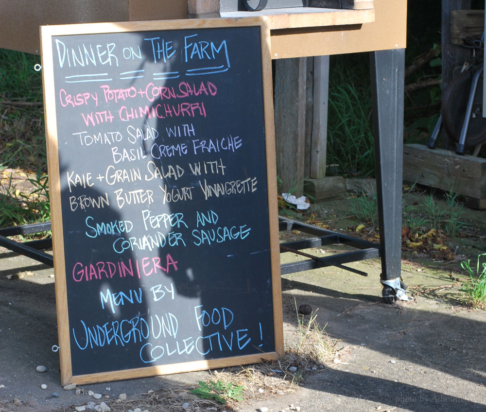 Dinner on the Farm menu by Underground Food Collective, Madison, WI