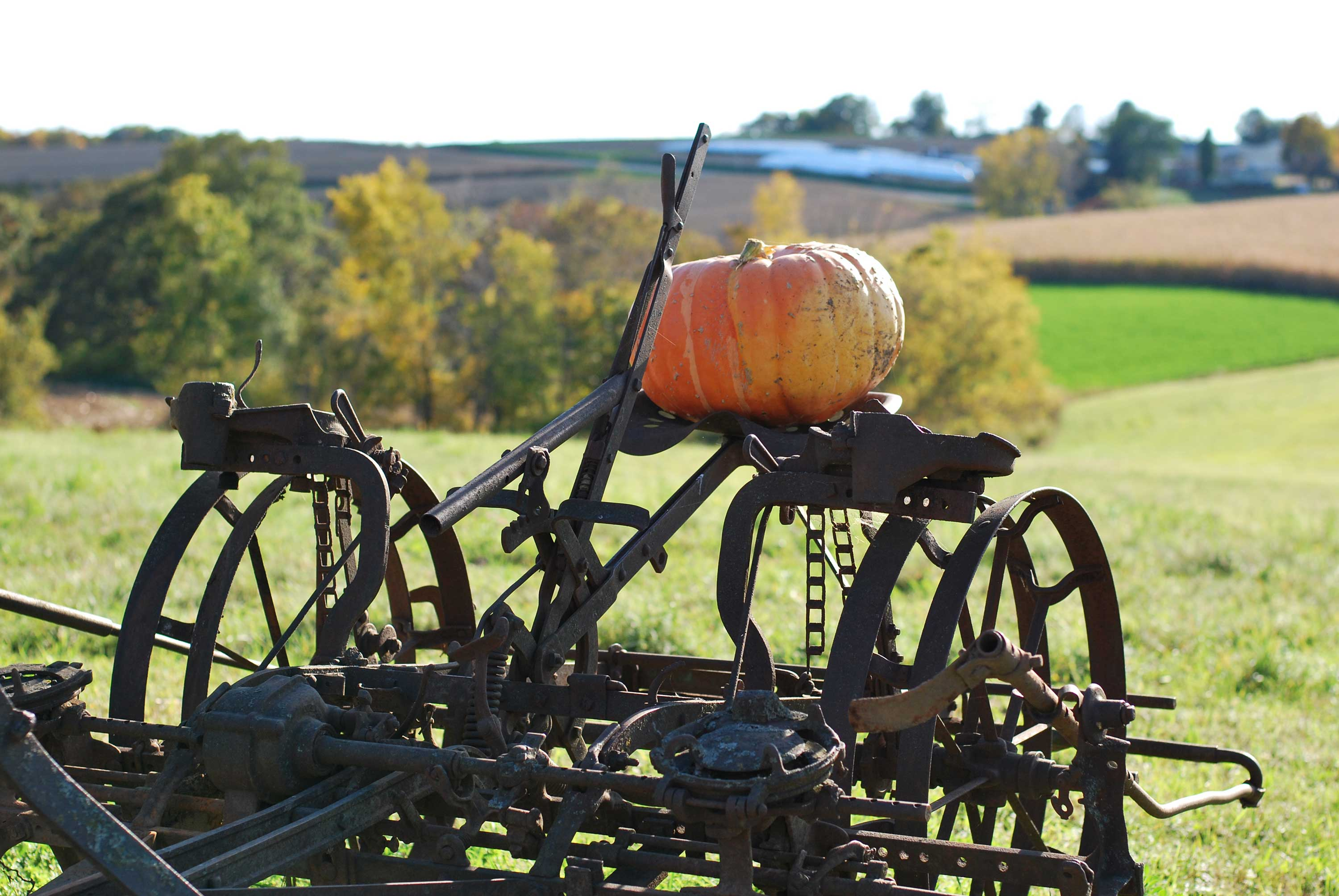 antique farm machinery, Sauk County, WIsconsin