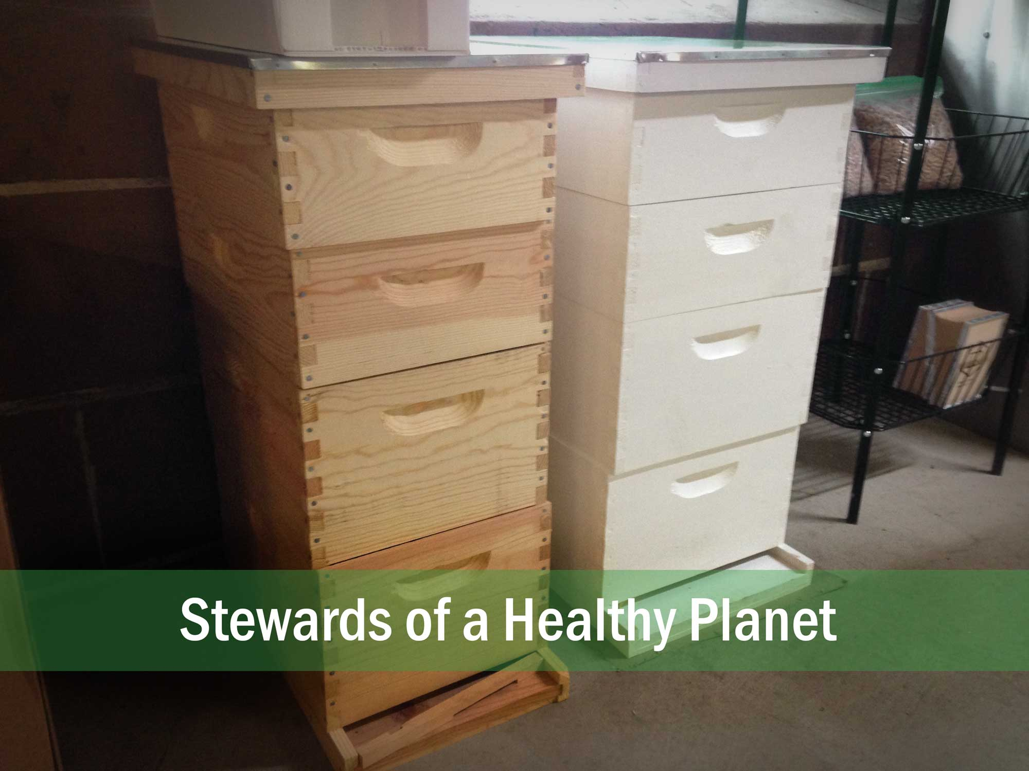 In celebration of National Ag Day , I bought my first bee hives