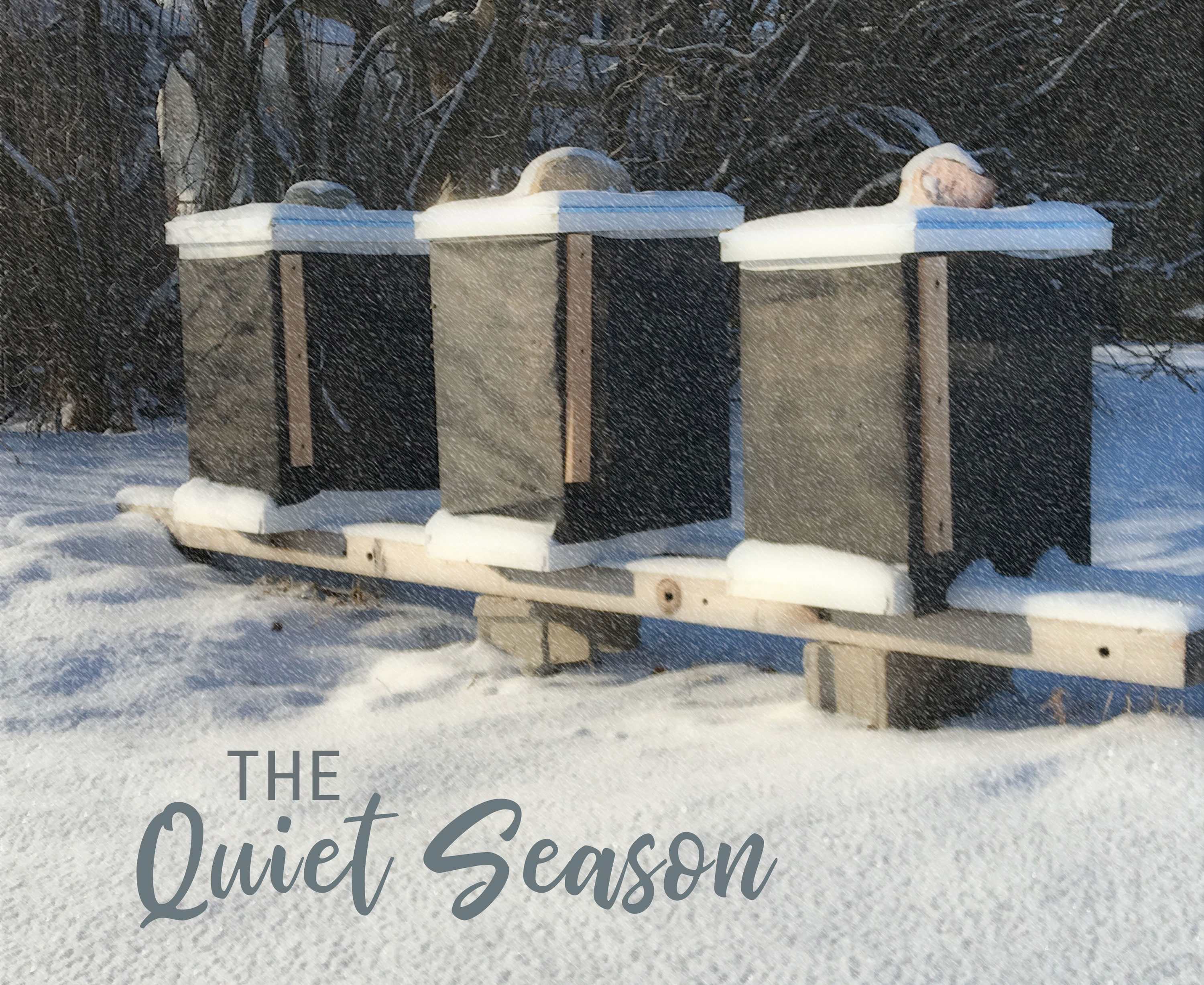 Wisconsin beehives in winter
