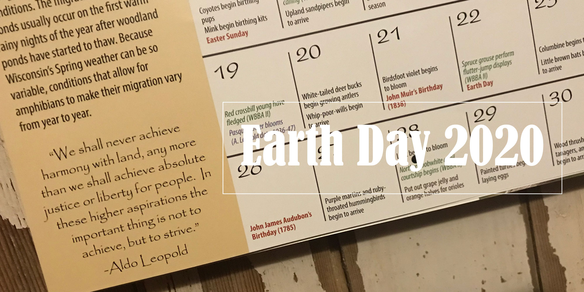 Striving for Harmony on Earth Day 2020